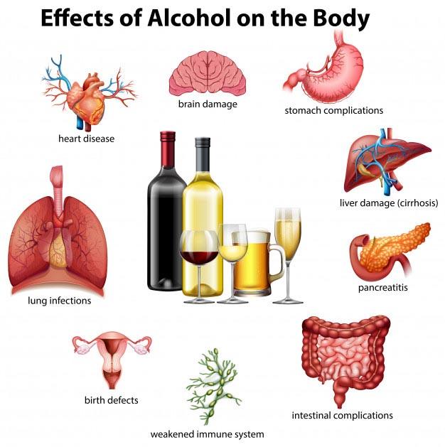 تاثیرات الکل بر بدن