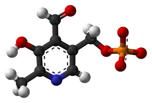 مولکول آنتی اکسیدان