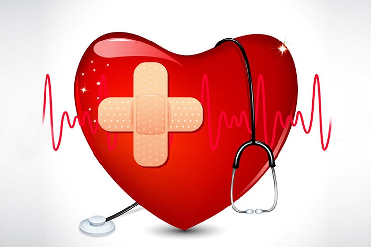 Learn more about heart disease and its treatment