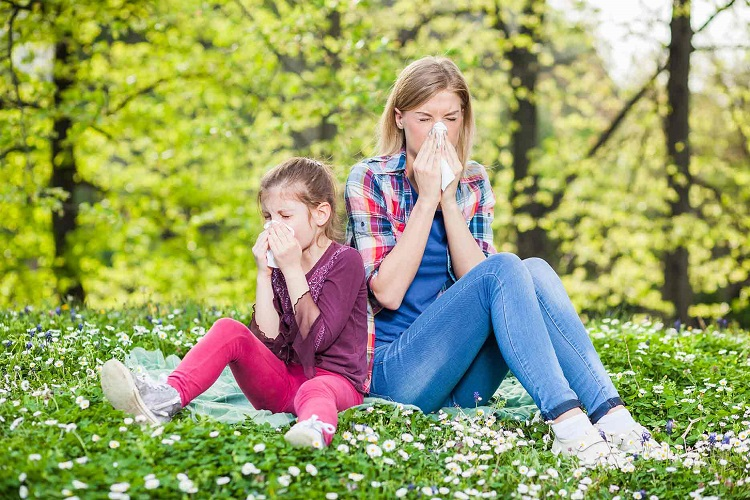 Learn more about allergies to better control it