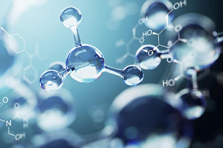 در مورد آنتی اکسیدان و فواید آن برای بدن چه میدانید؟