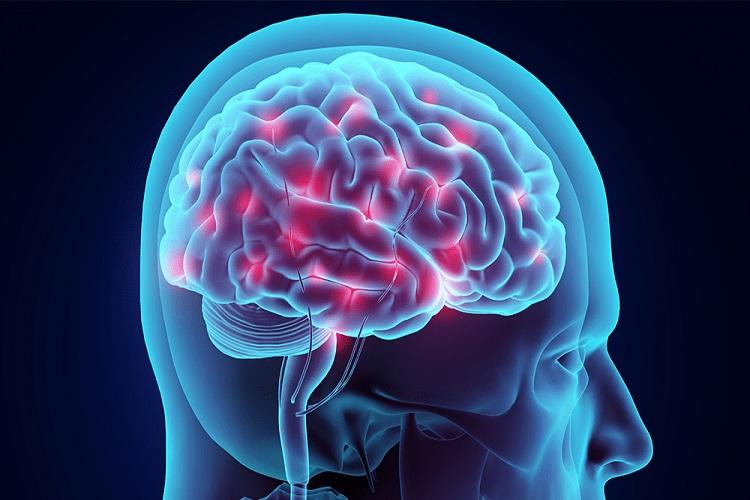 مروری بر عوامل شکلگیری تشنج و راهکارهای جامع برای درمان آن