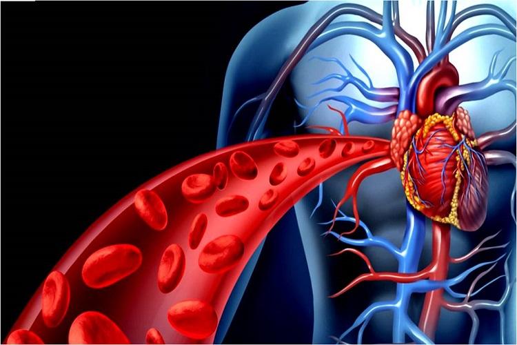 معرفی بیماری خطرناک اندوکاردیت Endocarditis همراه با درمانهای پزشکی