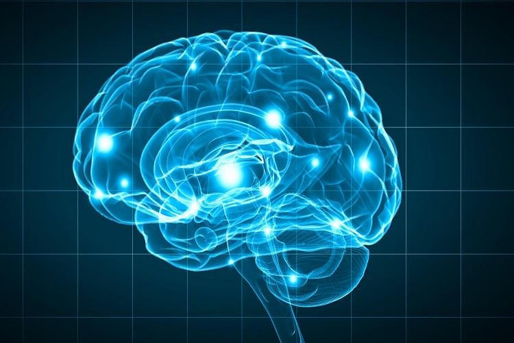 هورمون انکفالین enkephalin چیست و چه عملکردی در بدن دارد