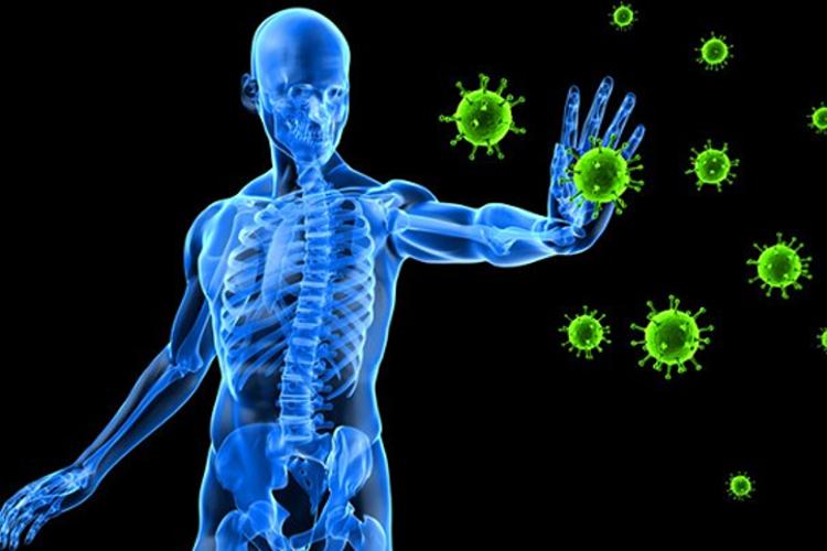 بررسی اختلالات نقص ایمنی بدن به همراه روشهای درمان آن