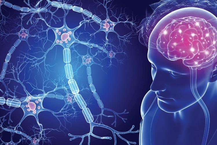 علائم اماس در زنان و مردان همراه با نشانههای اولیه و هر مرحله از بیماری