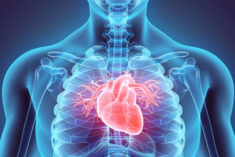 درباره نارسایی قلبی چه میدانید؟