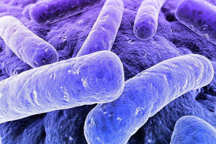 نکاتی که باید درباره بیماری خطرناک بوتولیسم Botulism بدانید