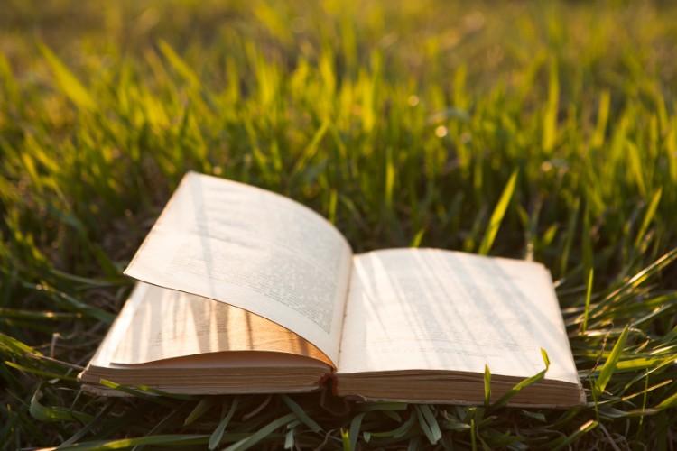 کتاب درمانی، تاثیر داستان در روان درمانی