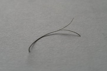 مو خوره چیست و چطور باید از ایجاد آن جلوگیری کرد