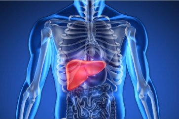 What to eat for liver cleansing?