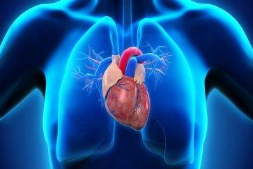 تنگی دریچه میترال قلب؛ علت ایجاد و علائم آن
