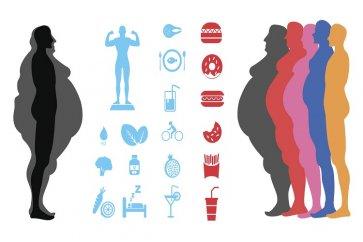 چاقی و اضافه وزن؛ علل، علائم و بیماریهای ناشی از آن