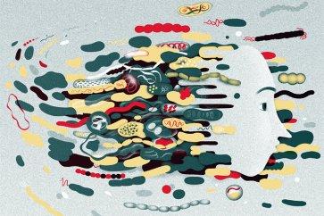 میکروبهای درون رودهتان با مغز شما صحبت میکنند. دانشمندان میخواهند بدانند آنها چه میگویند