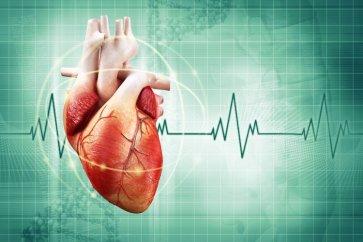 ضربان آهسته قلب  یا برادیکاردی Bradycardia چیست