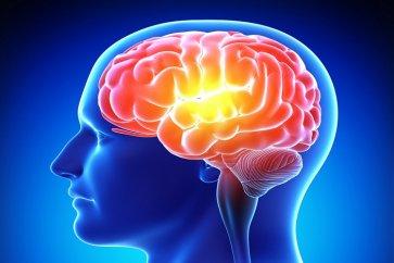 بیماری صرع Epilepsy چیست و چه علائمی دارد؟