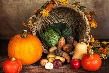 موثرترین موادغذایی برای تنظیم هورمونهای بدن و حفظ سلامتی